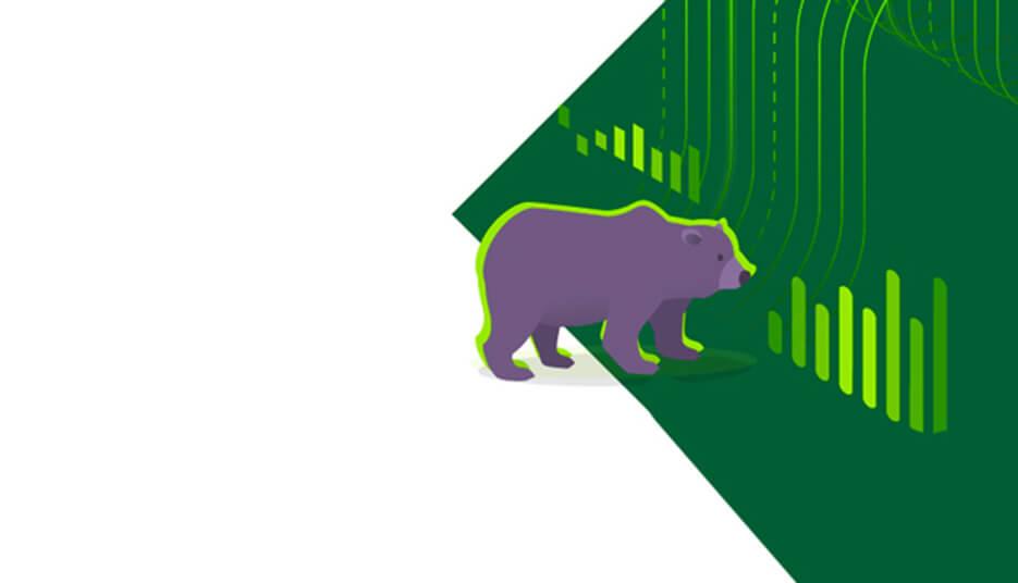 Кто такие «медведи» на бирже
