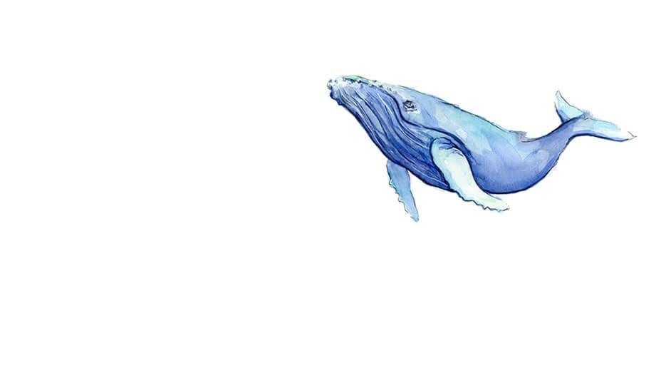 3 кита трейдинга
