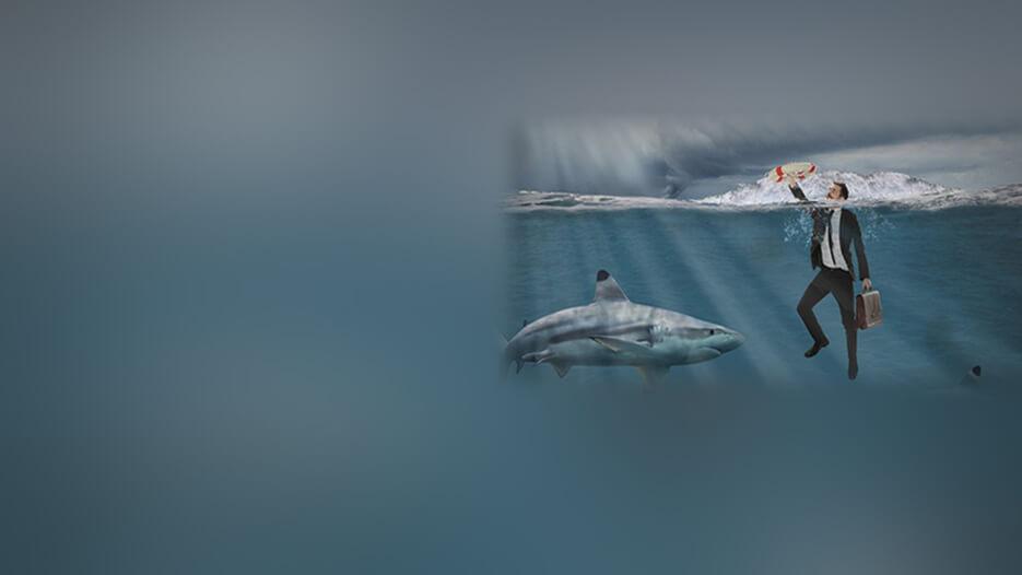 Как выжить в море трейдинга?